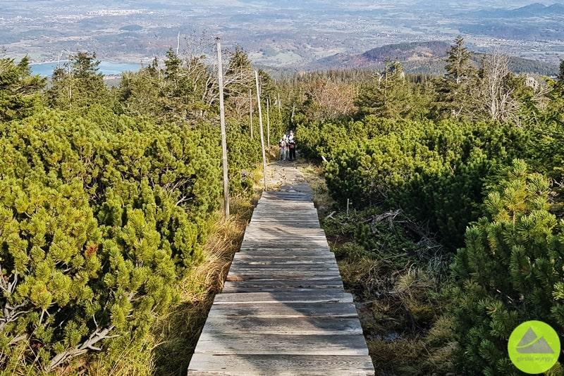 żółty szlak turystyczny wKarkonoszach