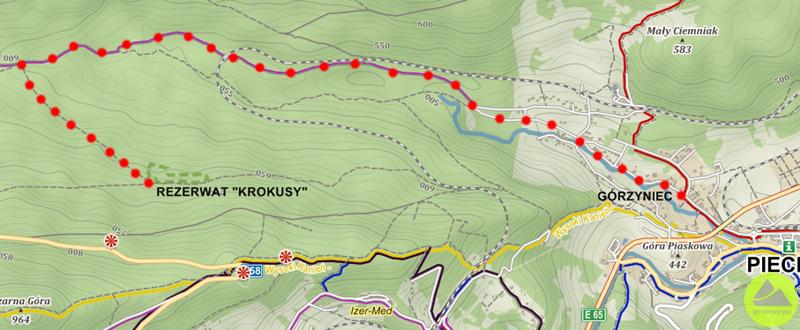 Rezerwat Krokusy wGórzyńcu - widok nawariant dojścia odstrony Górzyńca
