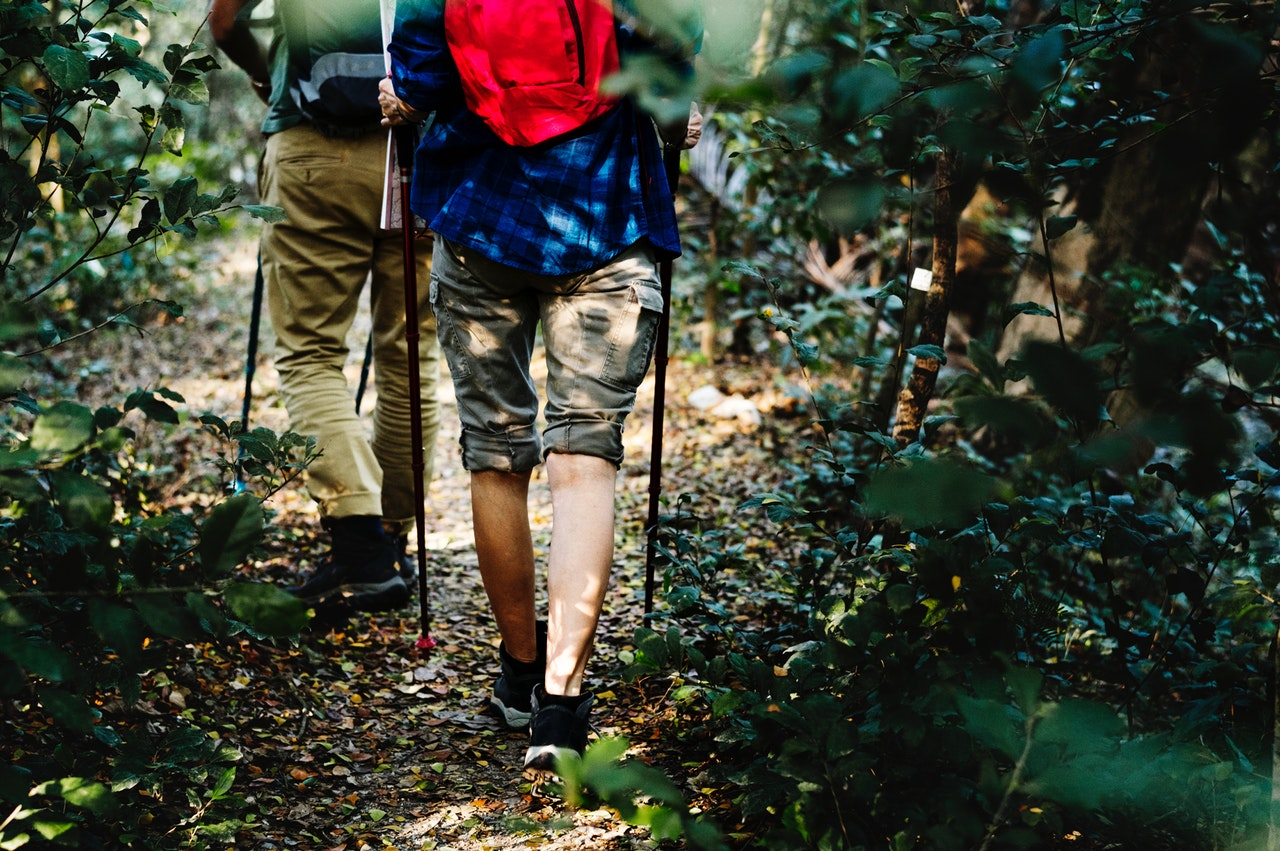 kije trekkingowe, turystyka, outdoor, turystyka gorska, sprzet turystyczny, piesze maratony