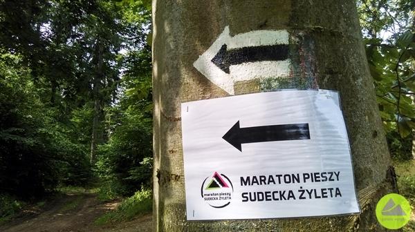 4. Maraton Pieszy Sudecka Żyleta - oznakowanie trasy