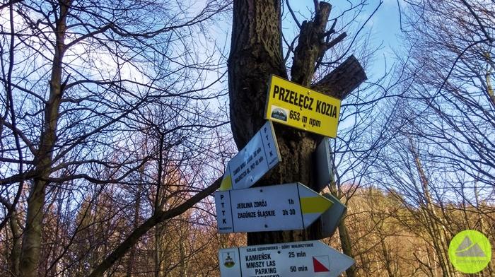 Górskie Wyrypy, Przełęcz Kozia w Górach Wałbrzyskich