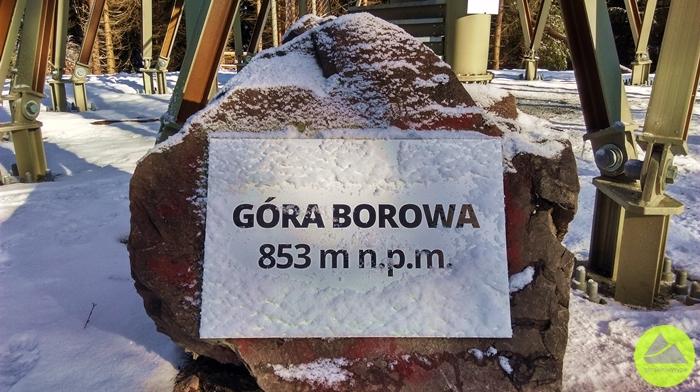 Górskie Wyrypy, głaz z tablicą na szczycie Borowa