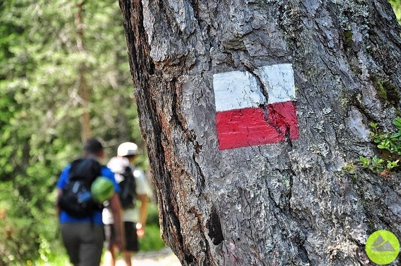 szlak turystyczny w drodze na ferrate ettore bovero oznaczony jest kwadratem