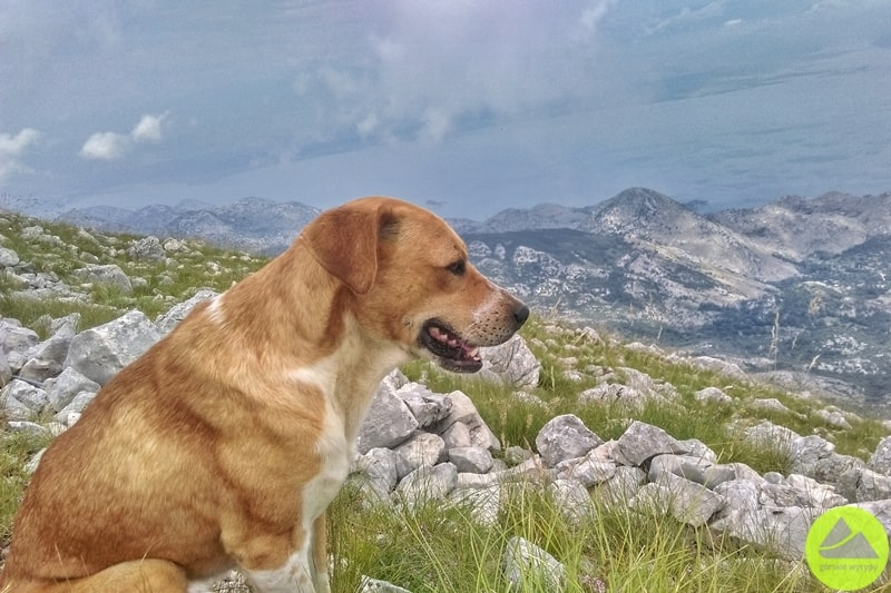 Rumija mountains Montenegro