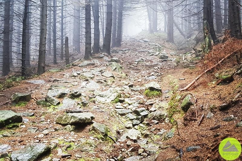szlaki wKarkonoszach