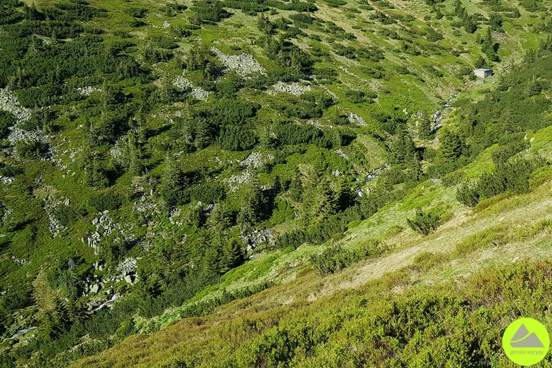 Dolina Białej Łaby wKarkonoszach
