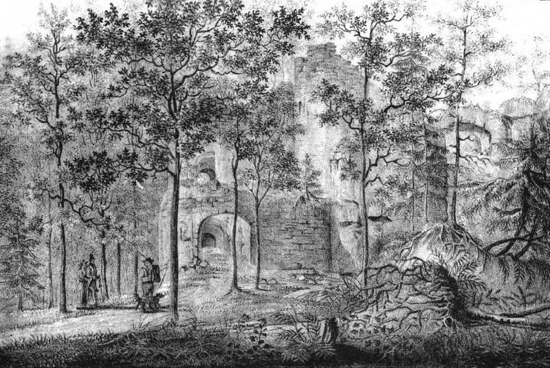 Zabek Bolczów w Rudawach Janowickich